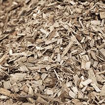exp_biomasse_pic_mid